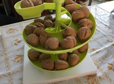 Itian organizzatore a spirale in plastica per frutta o uova